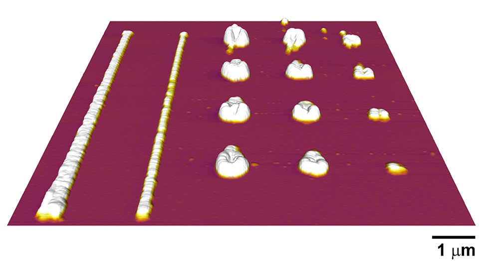 The chemical properties of these polymer nanostructures were measured using AFM-IR from Anasys Instruments.
