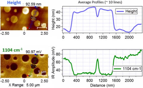 High resolution AFM-IR images (left) identified sub-surface features and composition of polymers localized at the surface interface. Average profiling (right) is performed as a function of height or IR response down to the nm scale.