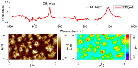 Resonance Enhanced AFM-IR spectrum (top), AFM topography image (bottom left) and IR image collected at 1340 cm-1 showing the sub monolayer coverage of a PEG layer on Au.