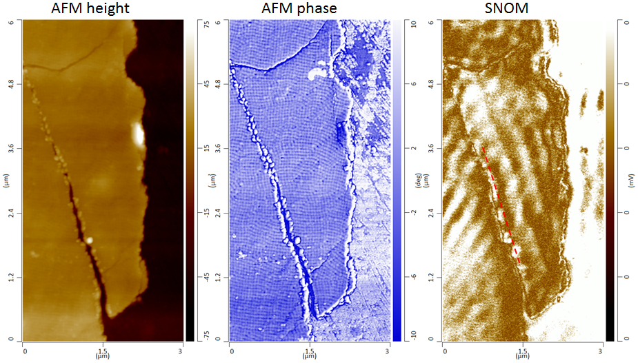Surface plasmon polaritons using visible illumination showing AFM topography and phase detailing Au rhombic dodecahedral lattices and the corresponding SNOM phase signal showing surface plasmons polaritrons propagating through the surface