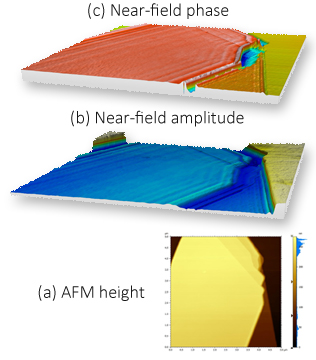 Nano imaging of surface phonon polaritons (SPhP) on hexagonal boron nitride (hBN). (a) AFM height image shows homogeneous hBN surface with different layers on Si substrate; (b) s-SNOM amplitude shows strong interference fringes due to propagating SPhP along the surface on hBN; (c) s-SNOM phase shows a difference phase with layer thickness. From the image b and c, we can also see the wavelength of the SPhP changes with the number of layers.
